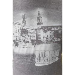 Camiseta Vitoria-Gasteiz
